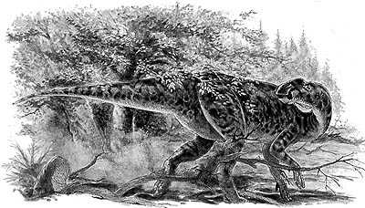 An artist's impression of Kritosaurus