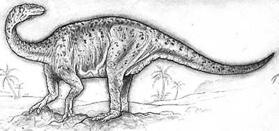 An artist's impression of Lufengosaurus