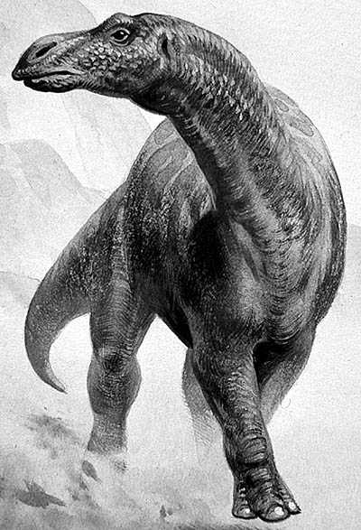 An artist's impression of Maiasaura