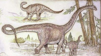 Mamenchisaurus milieu