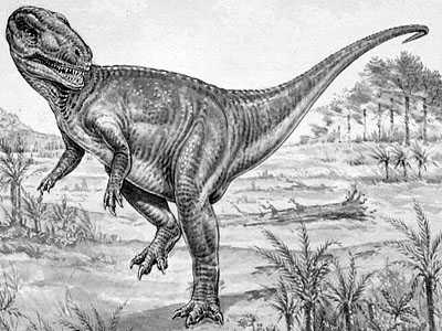 An artist's impression of Megalosaurus