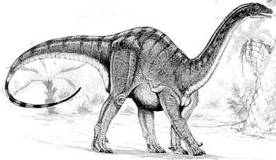 An artist's impression of Mussaurus