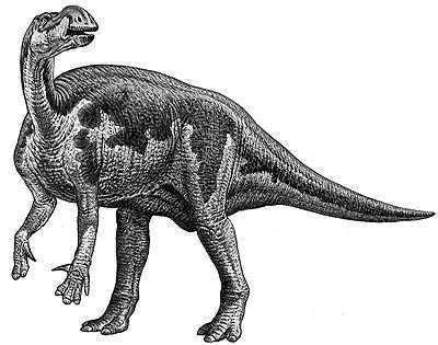 An artist's impression of Muttaburrasaurus