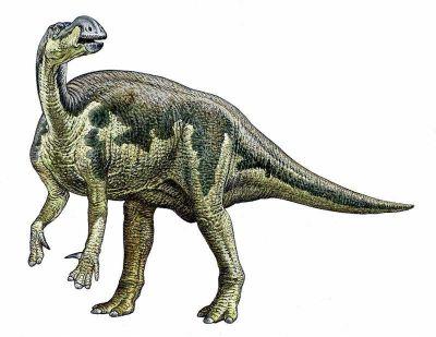 Muttaburrasaurus milieu