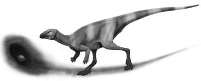 An artist's impression of Oryctodromeus