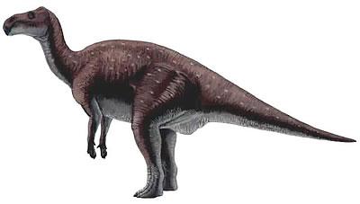 Probactrosaurus milieu