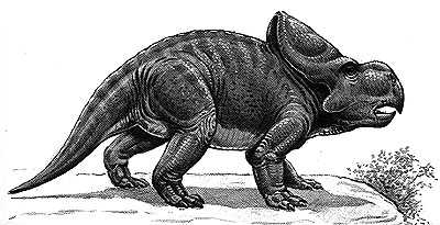 An artist's impression of Protoceratops