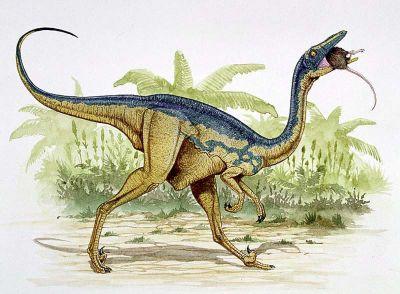 Saurornithoides milieu