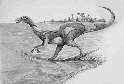 An artist's impression of Segnosaurus
