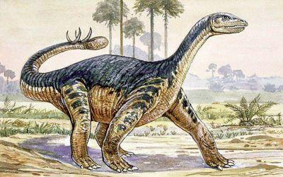 Shunosaurus milieu