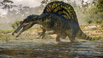 Spinosaurus milieu