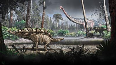 Stegosaurus milieu
