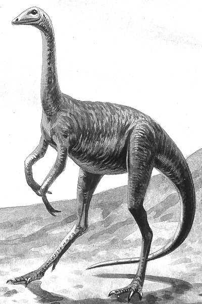 An artist's impression of Struthiomimus