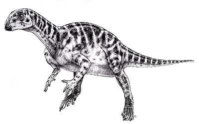 An artist's impression of Thescelosaurus