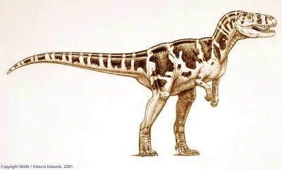 Torvosaurus milieu