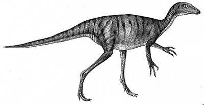 An artist's impression of Troodon