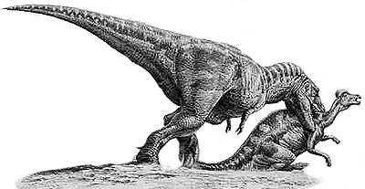 An artist's impression of Tyrannosaurus
