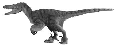 An artist's impression of Velociraptor