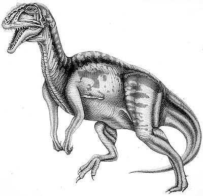 An artist's impression of Yangchuanosaurus