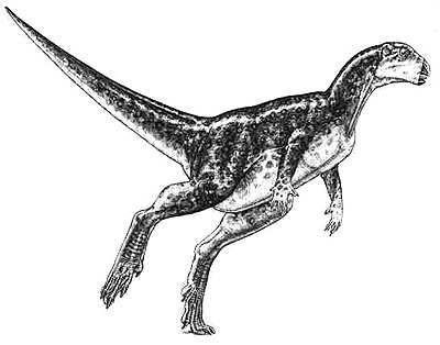 Zephyrosaurus