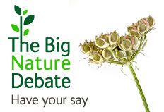 The Big Nature Debate