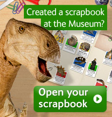 Open your Dinosaur scrapbook