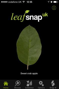 Download Leafsnap UK