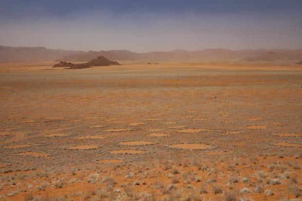 http://www.nhm.ac.uk/resources/natureplus/wpy-blog/wpy52/JenGuyton4.jpg