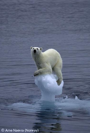 ClimateSpecialist