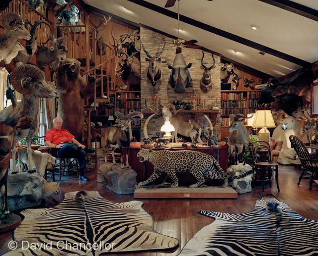 Hunting Room Ideas Man Caves Deer