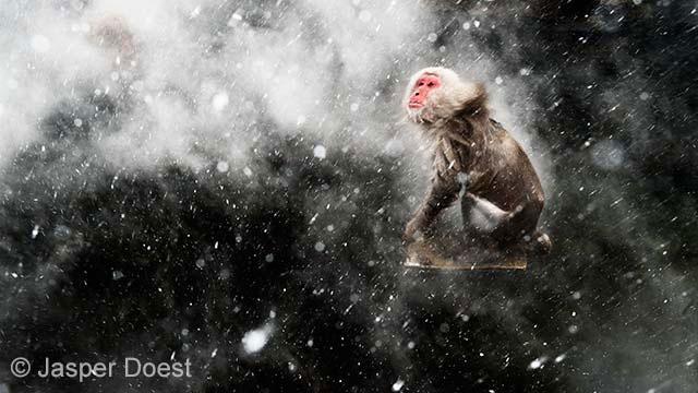 Snow moment