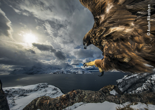 Land of the Eagle