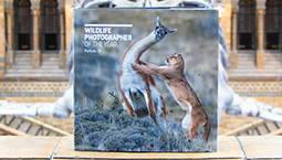 WPY 2019 competition book
